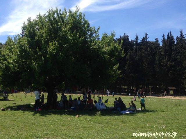 Το πρώτο picnic Ελληνίδων momblogger