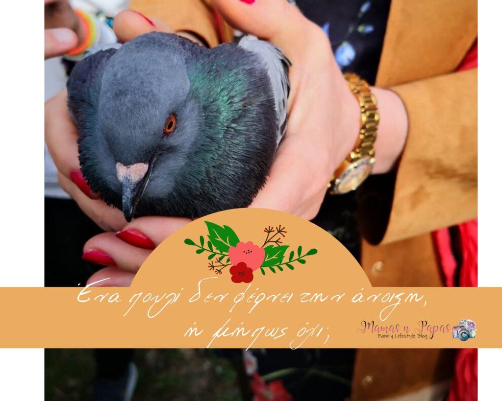 ένα πουλί δεν φέρνει την άνοιξη
